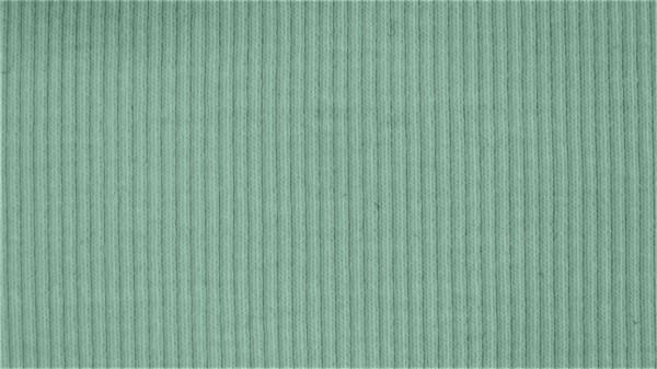 Stoffe/Basics/Rib Uni/Ribjersey, altgrün Bild 1