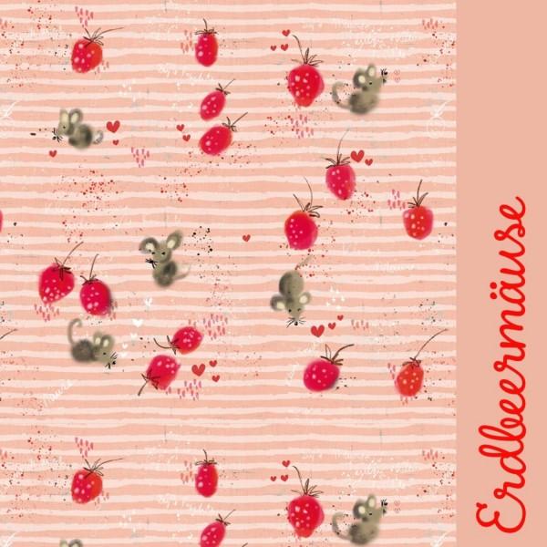 100_Erdbeermaeuse.jpg