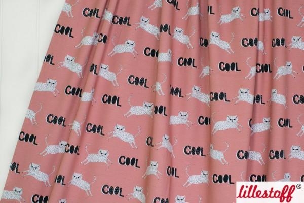 Fabrics/Animals/Cool Cat Bild 1