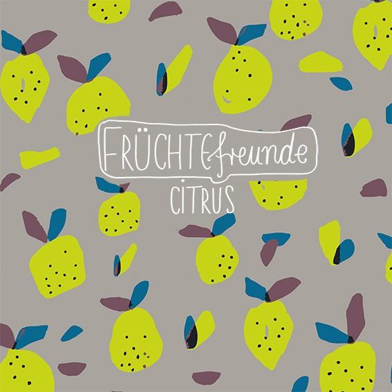 Stoffe/Designer/Miss Patty/Früchtefreunde Citrus Bild 1