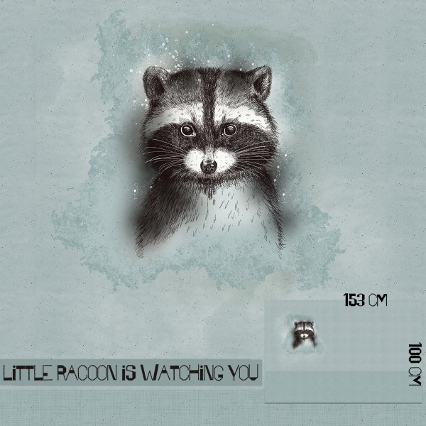 Fabrics/Designers/Tante Gisi/Little Racoon Is Watching You Bild 1
