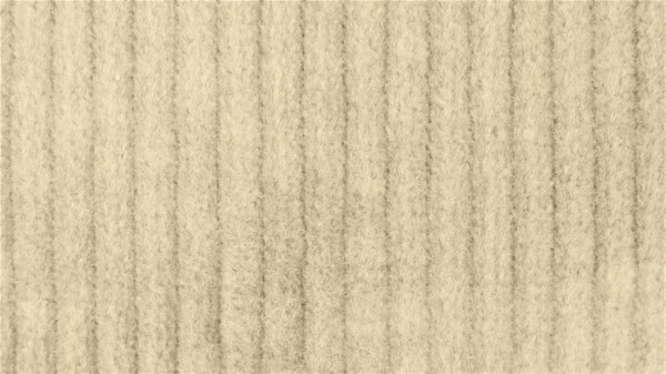 Stoffe/Basics/Cord Uni/Breitcord, hellbeige Bild 1