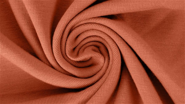 Fabrics/Basics/Solid Viscose Jersey/Viskose Jersey, brique Bild 1