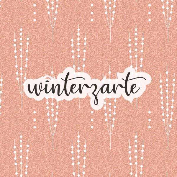 Stoffe/Jahreszeiten und Feiertage/Winterzarte, lachs Bild 1