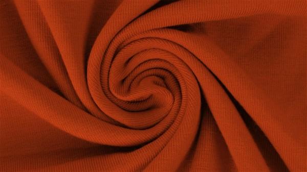 Fabrics/Basics/Solid Sweat/Summersweat, brique Bild 1