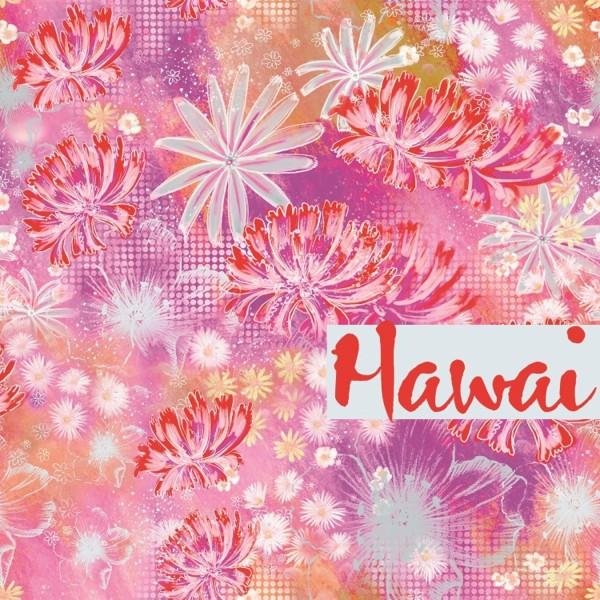 100_Hawai.jpg