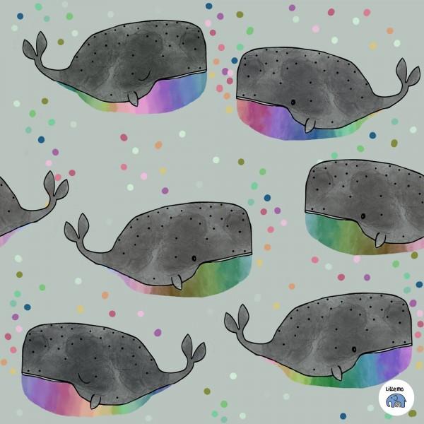 Regenbogenwal mit Logo.jpg