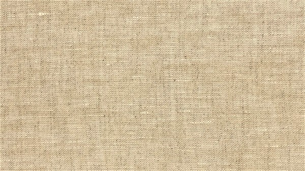 Fabrics/Basics/Solid Linnen/Leinen, hellbeige, washed Bild 1